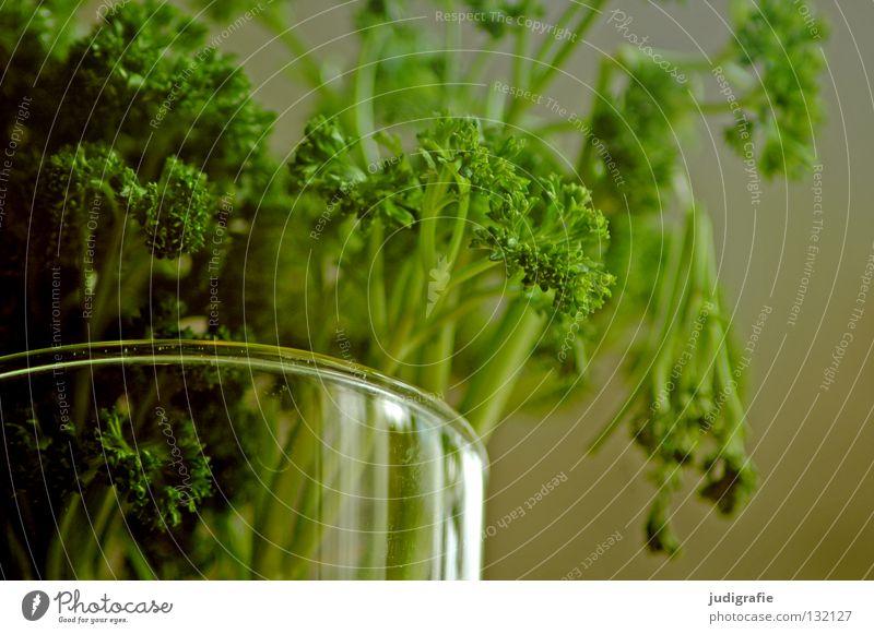 Petersilie Wasser grün Farbe Glas Lebensmittel frisch Ernährung Küche Kräuter & Gewürze Blumenstrauß Vase aromatisch