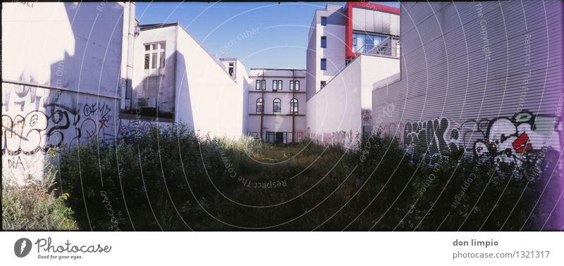 grüner hinterhof Stadt Sommer ruhig Ferne Wand Architektur Graffiti Gebäude Mauer Garten außergewöhnlich Fassade Häusliches Leben Idylle Perspektive retro