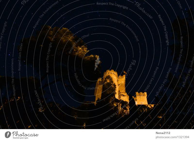Sommernacht am Schloß Himmel Landschaft Baum dunkel Wärme Frühling Gefühle außergewöhnlich Angst Schönes Wetter fantastisch Stern historisch Sehenswürdigkeit