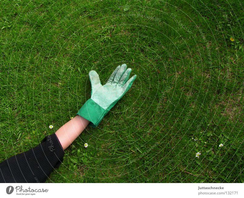 Nach der Arbeit sollst du ruh´n Hand Sommer Freude ruhig Erholung Arbeit & Erwerbstätigkeit Wiese Gras Frühling Garten Rasen Pause Frieden Freizeit & Hobby