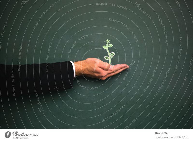 Umwelt Mensch Natur Mann Pflanze Blume Hand Erwachsene Leben Blüte Kunst maskulin Wachstum Erde Arme Zukunft