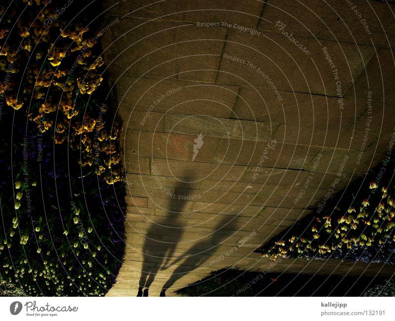 frühlingsgefühle on mars Frau Mann Hand schön Blume Liebe Garten Frühling Wege & Pfade Erde Paar Park 2 Kraft Zusammensein Wachstum
