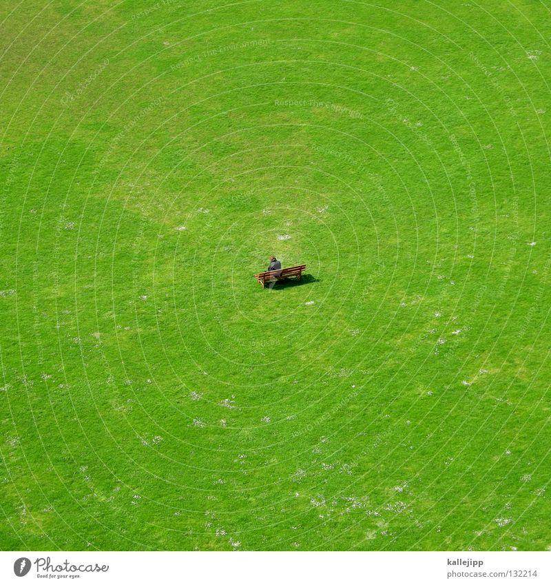rentenerhöhung Ruhestand Kapitalwirtschaft Kredit Wiese einzeln Gras Feld grün Vogelperspektive unten groß klein Miniatur Mann Reifezeit Zukunft Park Götter