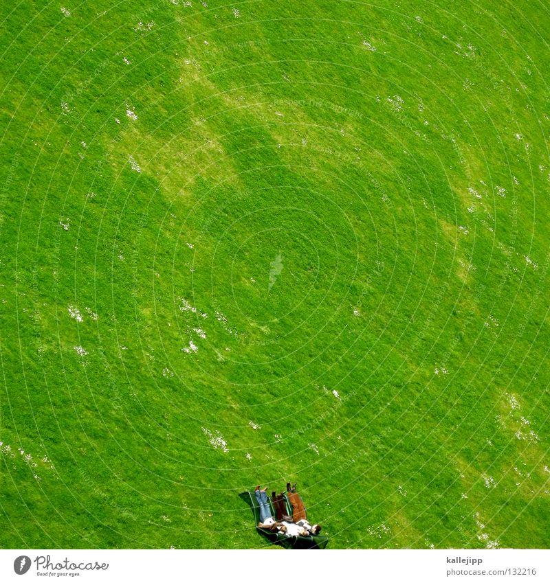bildunterkantechillen Mensch Ferien & Urlaub & Reisen Mann grün Erholung Leben Wiese Gras klein Garten oben Park Feld Freizeit & Hobby Wachstum Rücken