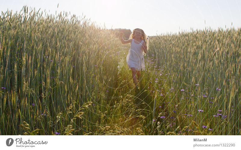 Sommerluft Mensch Mädchen 1 3-8 Jahre Kind Kindheit Sonne Sonnenlicht Schönes Wetter Feld Bewegung entdecken Lächeln leuchten blond Duft frei Freundlichkeit