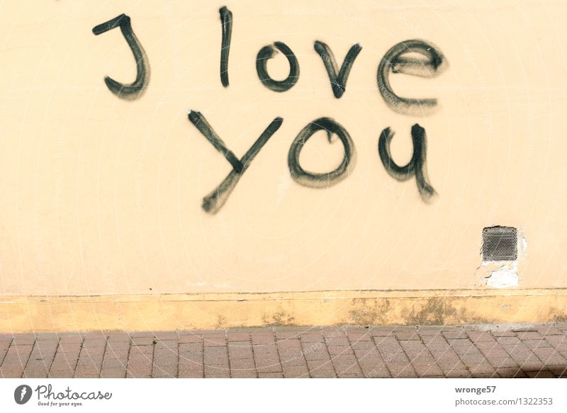 Aussage Schwarz Gelb Wand Gefühle Graffiti Mauer Glück Braun Fassade  Schriftzeichen Romantik Hoffnung Verliebtheit Text Treue