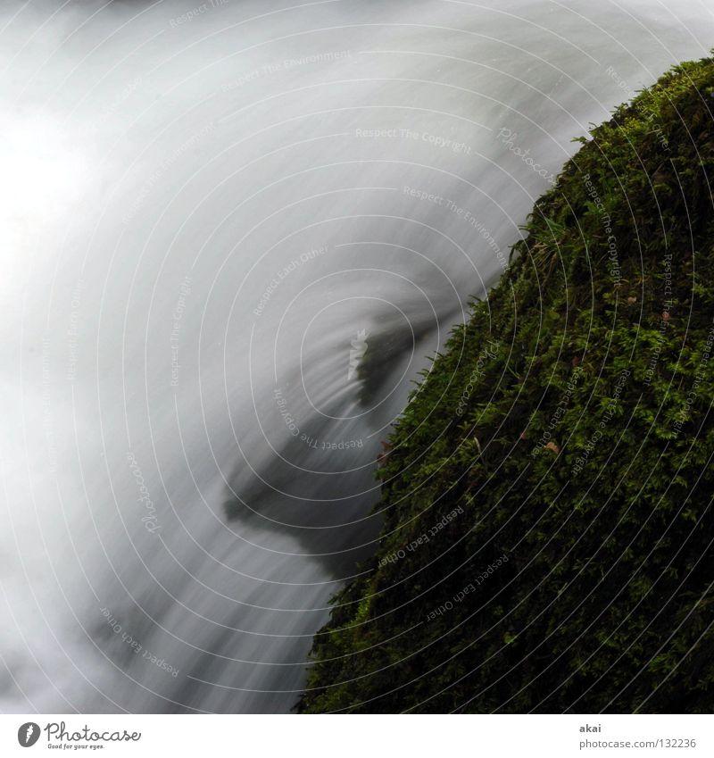 Hydrodynamik schön Berge u. Gebirge Landschaft Wasser Bach Wasserfall kalt weich blau Wildbach Schwarzwald Mittelgebirge graufilter Langzeitbelichtung Dreisam