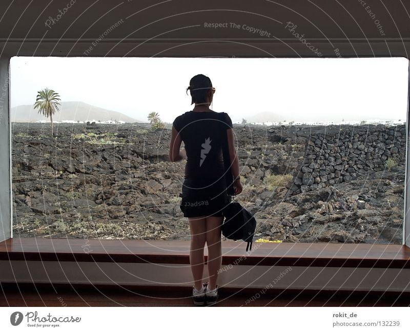 Aussicht Frau schön Freude schwarz Haus Einsamkeit Fenster Stein braun modern Insel Aussicht Mitte genießen Palme Tasche