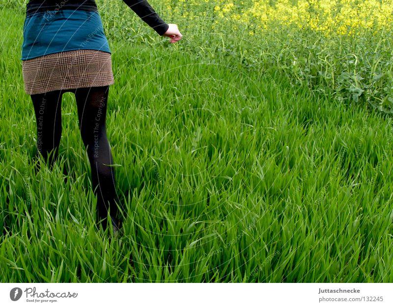 Alice im Wunderland II schwarz Frieden Frau verloren grün Gras Wiese Feld gehen Raps Minirock quer flüchten laufen Frühling friedlich Natur stapfen quer durch