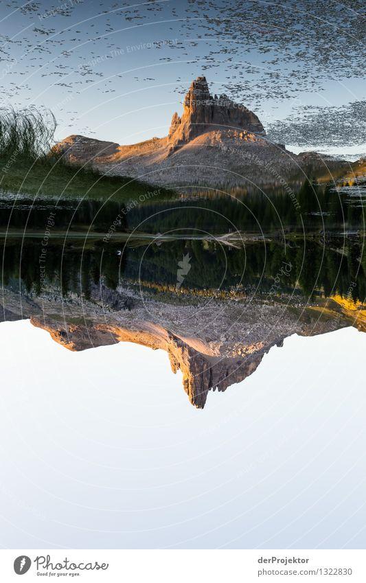 Fast perfekt gespiegelt Ferien & Urlaub & Reisen Tourismus Ausflug Abenteuer Ferne Freiheit Berge u. Gebirge wandern Umwelt Natur Landschaft Pflanze Tier Sommer