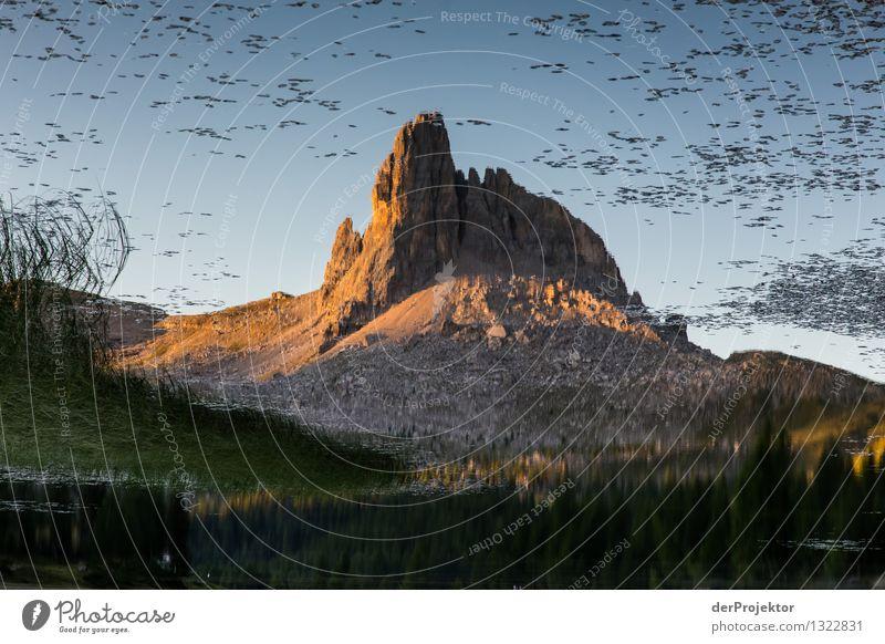 Croda da Logo im Spiegel Natur Ferien & Urlaub & Reisen Pflanze Sommer Landschaft Tier Ferne Berge u. Gebirge Umwelt Freiheit außergewöhnlich See Felsen
