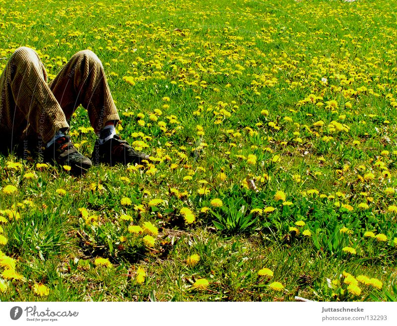 M Natur grün Sommer Freude gelb Erholung Wiese Frühling Freiheit träumen Fuß Schuhe Beine Zufriedenheit braun Kraft