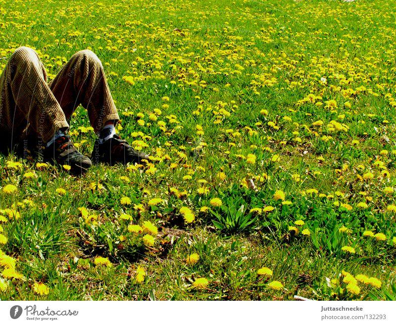 M Pause Erholung Wiese Löwenzahn Blumenwiese schlafen gelb Sommer Frühling grün liegen träumen Schuhe beige braun Kraft Kindheit liegen Zufriedenheit