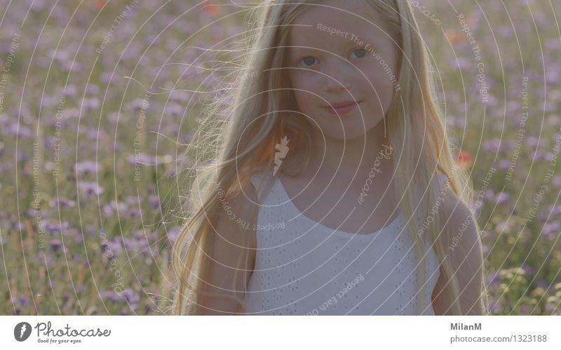 Sommerluft Glück Sommerurlaub Sonne feminin Mädchen Schwester Kindheit Gesicht 1 Mensch 3-8 Jahre Natur Wärme Nutzpflanze Feld Denken Lächeln leuchten träumen