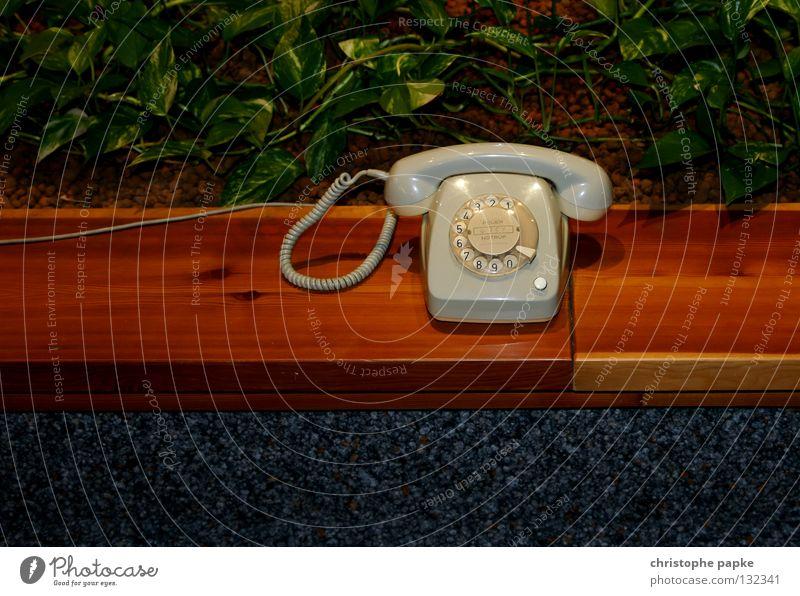 Fernmündlicher Festnetzanschluss grün Pflanze grau Holz liegen stehen Dinge Technik & Technologie Telefon retro Ziffern & Zahlen Kabel Bank Kontakt Medien obskur