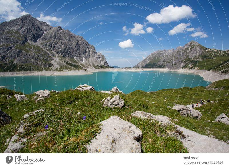 Heimat III Ferien & Urlaub & Reisen Tourismus Berge u. Gebirge wandern Natur Landschaft Wasser Himmel Wolken Sommer Schönes Wetter Wildpflanze Bergwiese Blumen