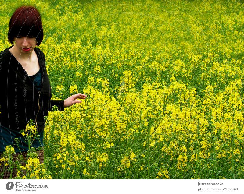 Alice im Wunderland III Frau Natur Blume grün Sommer schwarz gelb Wiese Blüte Gras Feld gehen Frieden Mitte Blühend verloren