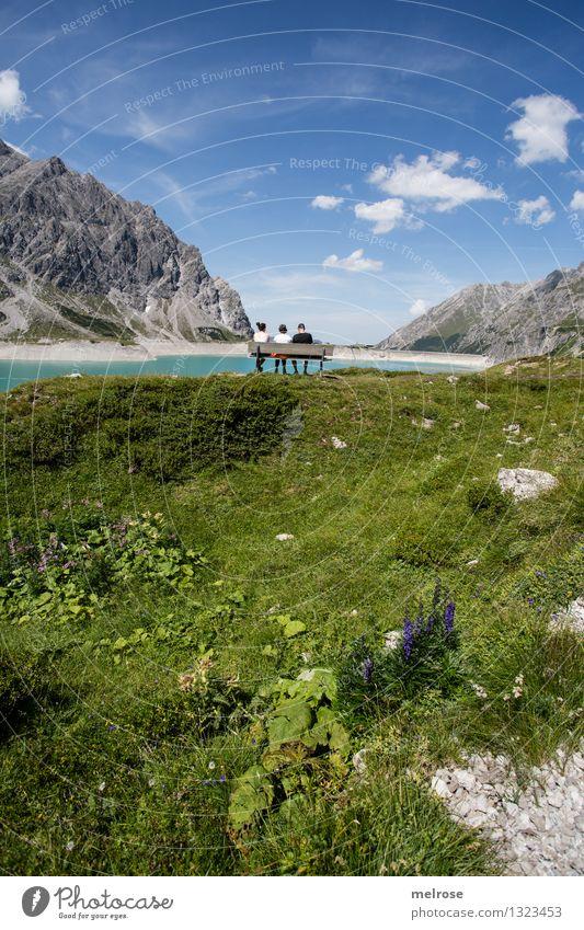 Genuss pur Tourismus Berge u. Gebirge wandern Mensch 3 45-60 Jahre Erwachsene Natur Landschaft Erde Wasser Himmel Wolken Sommer Schönes Wetter Blume Wildpflanze