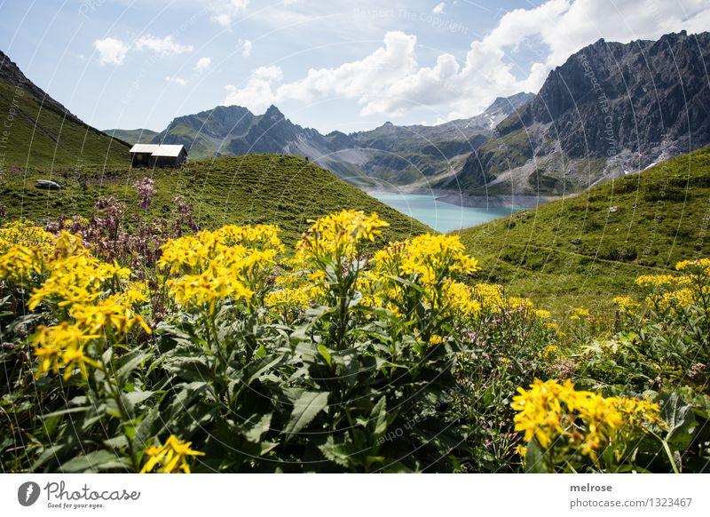 Heimat IV Himmel Natur Ferien & Urlaub & Reisen grün schön Sommer Wasser Erholung Landschaft Wolken Berge u. Gebirge gelb Gras See Tourismus Idylle