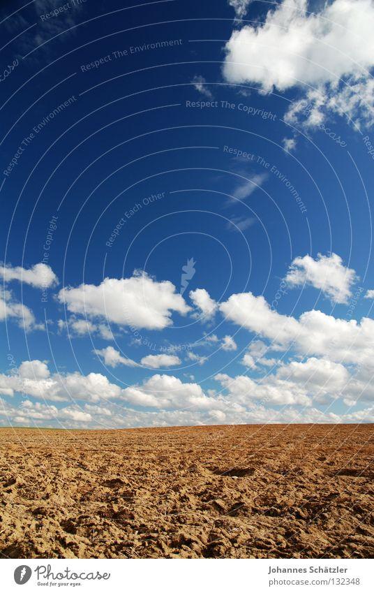 Im Nirvana Feld Gras Landwirtschaft Wissenschaften Elektrizität Kraft Wolken Himmel Frühling Sommer Aussaat säen Bauernhof Kuhmist grün Polarisation Landschaft