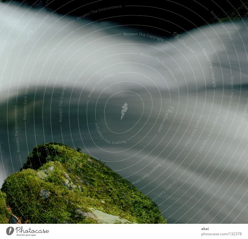 Rauschen Berge u. Gebirge Landschaft Wasser Bach Fluss Wasserfall kalt weich Wildbach Schwarzwald Schauinsland Mittelgebirge graufilter Langzeitbelichtung