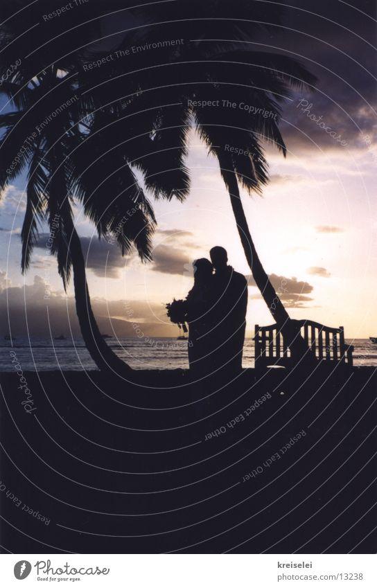 Hochzeit unter Palmen Ferien & Urlaub & Reisen Hawaii Sonnenuntergang Liebe Paar paarweise Romantik Silhouette Liebespaar Ehepaar Hochzeitspaar Kitsch Klischee