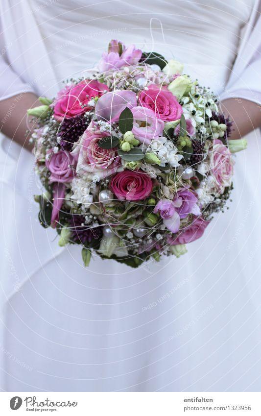 Brautstrauß elegant Freude Glück schön Feste & Feiern Hochzeit feminin Frau Erwachsene Paar Partner Leben Körper Frauenbrust Arme 1 Mensch 30-45 Jahre Sommer