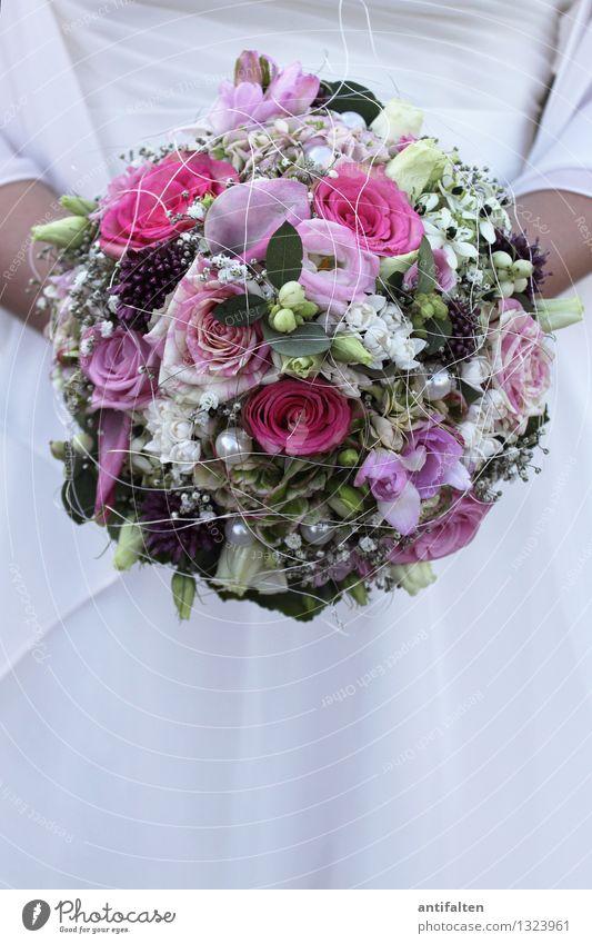 Traum | hafter Brautstrauss Mensch Frau grün schön weiß Blume Blatt Erwachsene Leben Blüte Liebe feminin Glück rosa Dekoration & Verzierung Körper