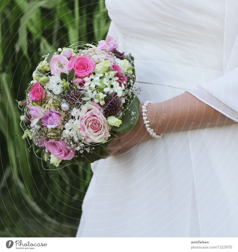 Brautstrauß im Quadrat Mensch Frau grün schön Sommer weiß Blume Hand Blatt Erwachsene Blüte Liebe feminin Feste & Feiern rosa Körper