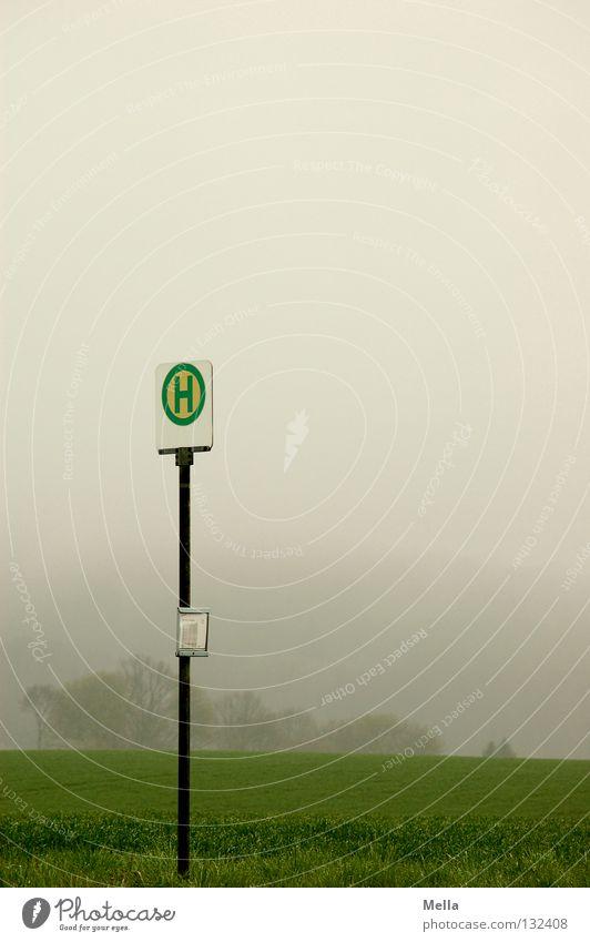 Im Nichts Umwelt schlechtes Wetter Nebel Feld Verkehr Öffentlicher Personennahverkehr Schilder & Markierungen trist grau grün Stimmung Einsamkeit Langeweile