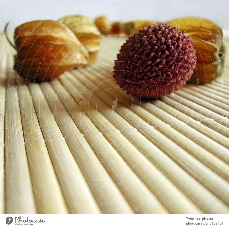 Exoten Physalis Lampionblume Gesundheit Vitamin C lecker getrocknet Lychee gelb rosa aufmachen Geschmackssinn Tisch Dekoration & Verzierung Stillleben