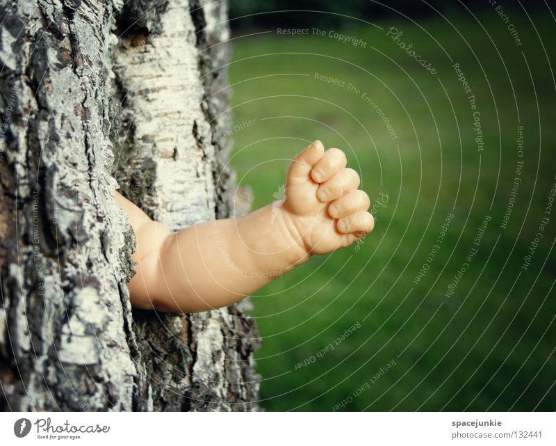 Austrieb Baum Baumrinde Holz Hand skurril Wachstum Reifezeit Frühling Blatt grün Birke Gartenarbeit Säge Faust Finger Freude Puppe Arme Statue Ast Natur alt