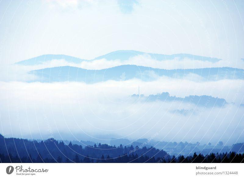 Empire Of The Clouds Himmel Natur Ferien & Urlaub & Reisen blau Sommer schön weiß Baum Landschaft Erholung Wolken Ferne Wald schwarz Berge u. Gebirge Umwelt