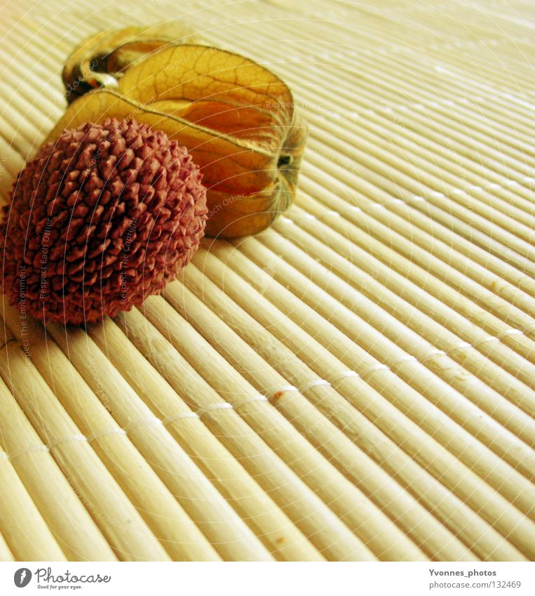 Exoten II Physalis Lampionblume Gesundheit Vitamin C lecker getrocknet Lychee gelb rosa aufmachen Geschmackssinn Tisch Dekoration & Verzierung Stillleben