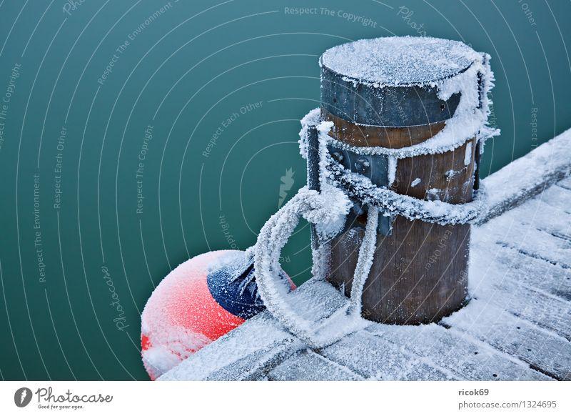 Poller Winter Seil Wasser Eis Frost Küste Ostsee Hafen kalt Farbe Natur ruhig Fender Steg Anlegestelle Schnee Tau Insel Poel Mecklenburg-Vorpommern Timmendorf
