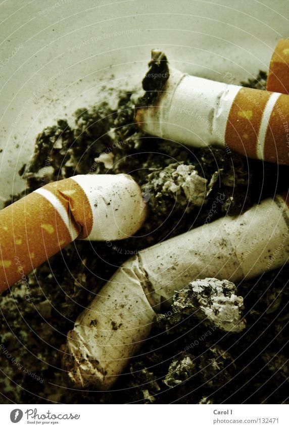 Vorsatz nicht durchgehalten... Zigarette Abhängigkeit Aschenbecher Glut schwarz Mitläufer grauenvoll verraucht genießen Rauch Tabak Missbrauch Ausgang fertig