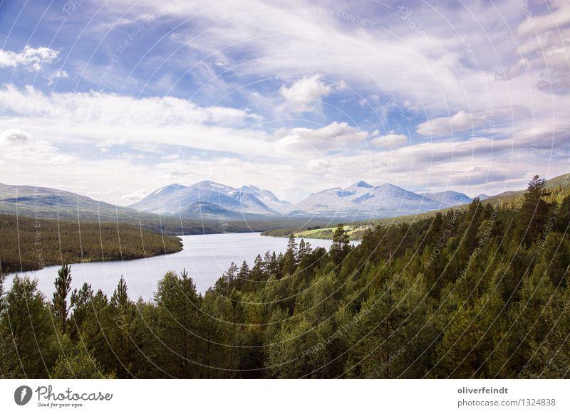 Norwegen VIII - Rondane Himmel Natur Ferien & Urlaub & Reisen schön Sommer Landschaft Wolken Ferne Wald Berge u. Gebirge Umwelt Freiheit Felsen Horizont groß