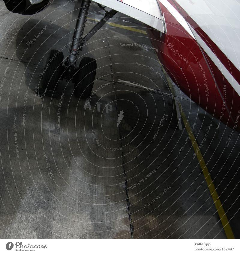 ein ja für tempelhof Ferien & Urlaub & Reisen Fenster Linie Beleuchtung Deutschland Flugzeug Sicherheit Luftverkehr Güterverkehr & Logistik Ziel