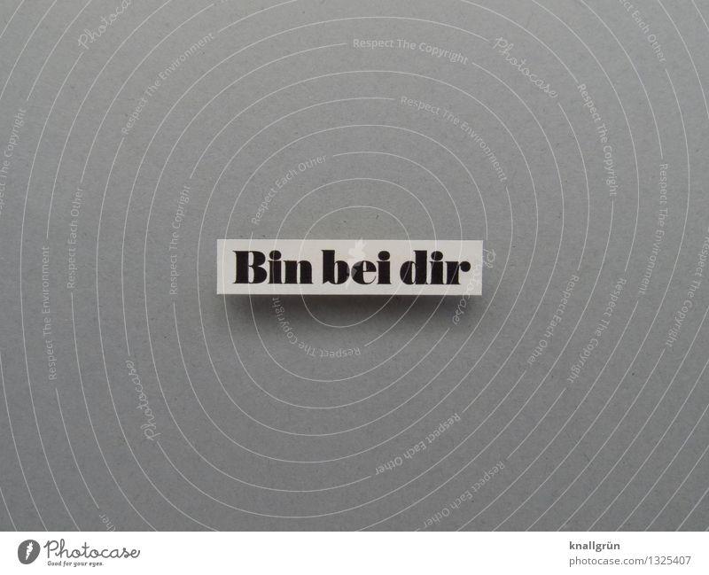 Bin bei dir Schriftzeichen Schilder & Markierungen Kommunizieren eckig grau schwarz weiß Gefühle Glück Lebensfreude Leidenschaft Vertrauen Schutz Geborgenheit