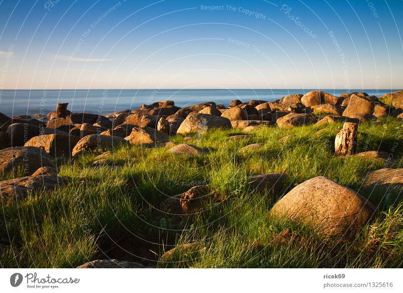 Ostseeküste Ferien & Urlaub & Reisen Strand Natur Landschaft Wasser Wolkenloser Himmel Gras Felsen Küste Meer Stein Holz blau grün Romantik Idylle ruhig
