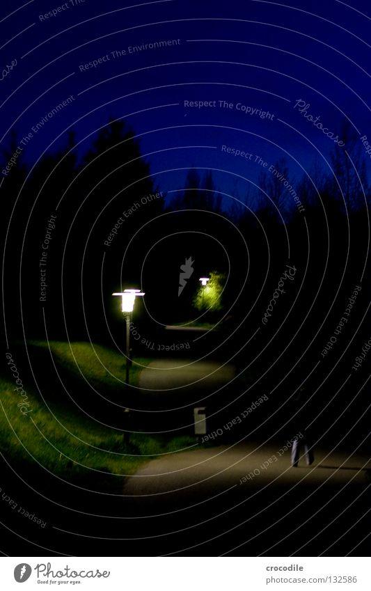 nightwalk gehen Laterne Gras Müllbehälter Baum erleuchten Nacht Frau Hose Verkehrswege Himmel Spaziergang Straße Wege & Pfade Dämmerung Abend Jeanshose groß