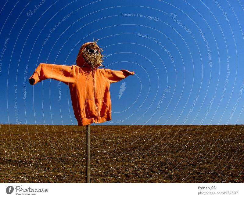100 (99) - I'm a pretty girl Himmel Natur blau Einsamkeit Landschaft Freiheit Holz Stein Linie orange braun Horizont Vogel Feld Erde Angst