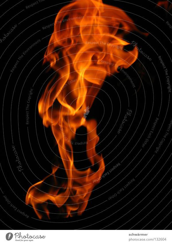 Firescream Natur schwarz dunkel Freiheit Wärme Kraft Brand Energie Feuer wild heiß Wut schreien Flamme Ärger