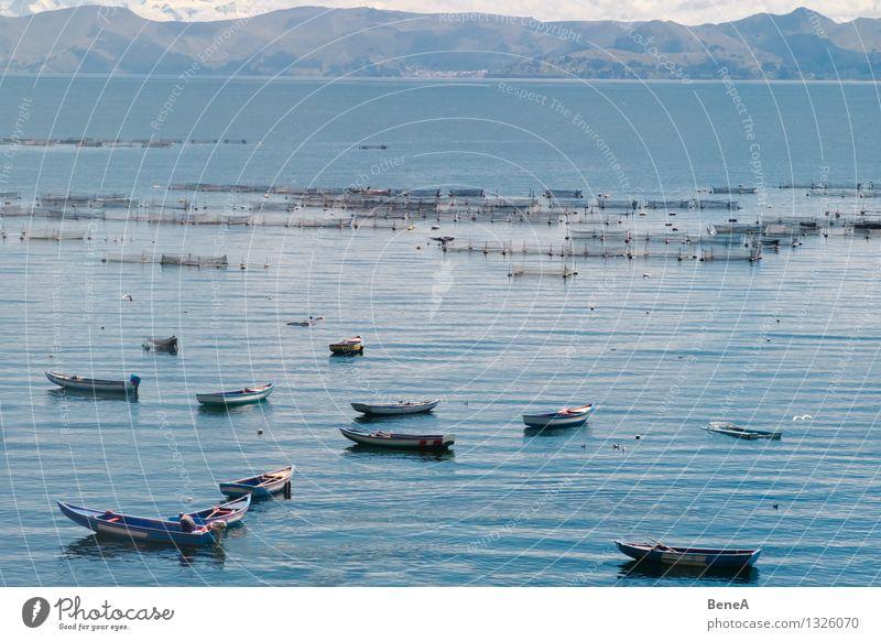 Titikakasee Angeln Fischereiwirtschaft Fischerboot Fischernetz Fischereihafen Landschaft Wasser Berge u. Gebirge Anden See Titicacasee Bolivien Peru Südamerika