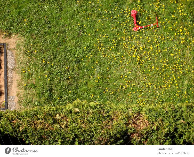 Roller im Löwenzahn rot Sommer Wiese Gras Hecke Tretroller Sandkasten