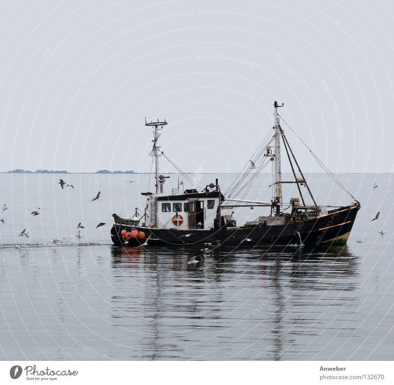 Fischkutter zwischen Sylt und Amrum Außenaufnahme Menschenleer Textfreiraum oben Textfreiraum unten Hintergrund neutral Tag Dämmerung Reflexion & Spiegelung