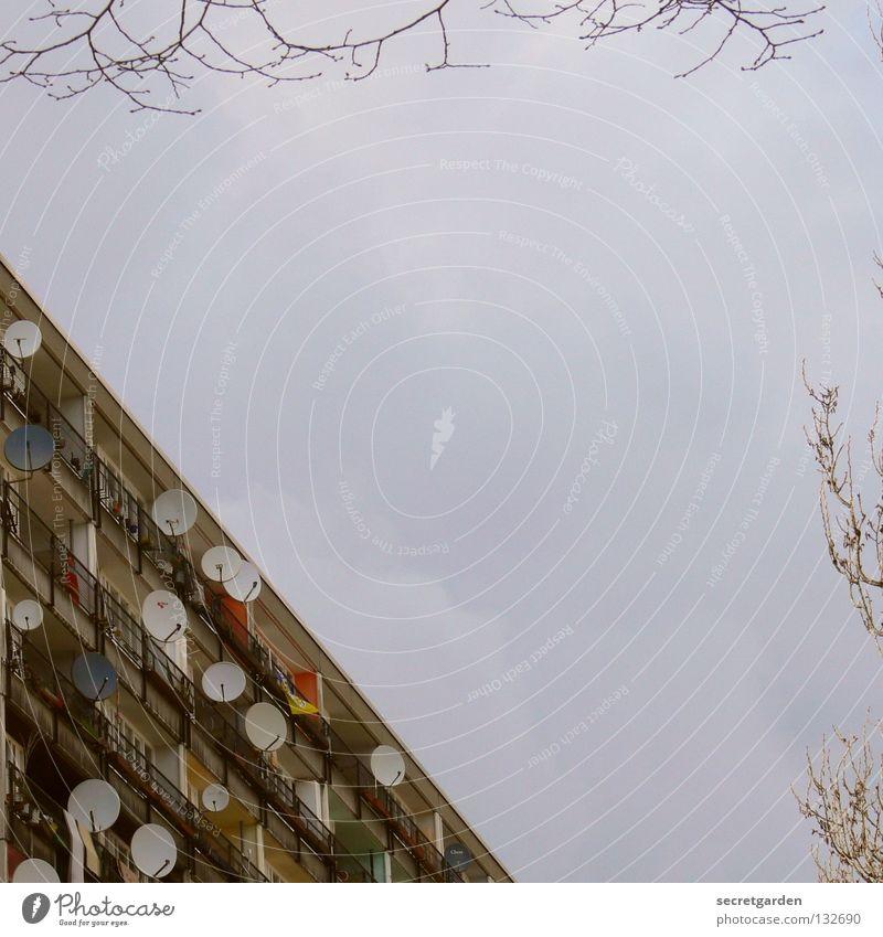 guter empfang. jetzt auch in farbe. Himmel Natur blau Ferien & Urlaub & Reisen Baum Freude Farbe Wolken Haus Architektur modern Hochhaus Kommunizieren