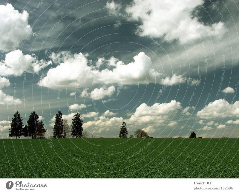 Inningen bei Augsburg Himmel blau grün Baum Wolken Erholung Ferne Landschaft dunkel Wiese kalt Wärme Gras Frühling Freiheit grau