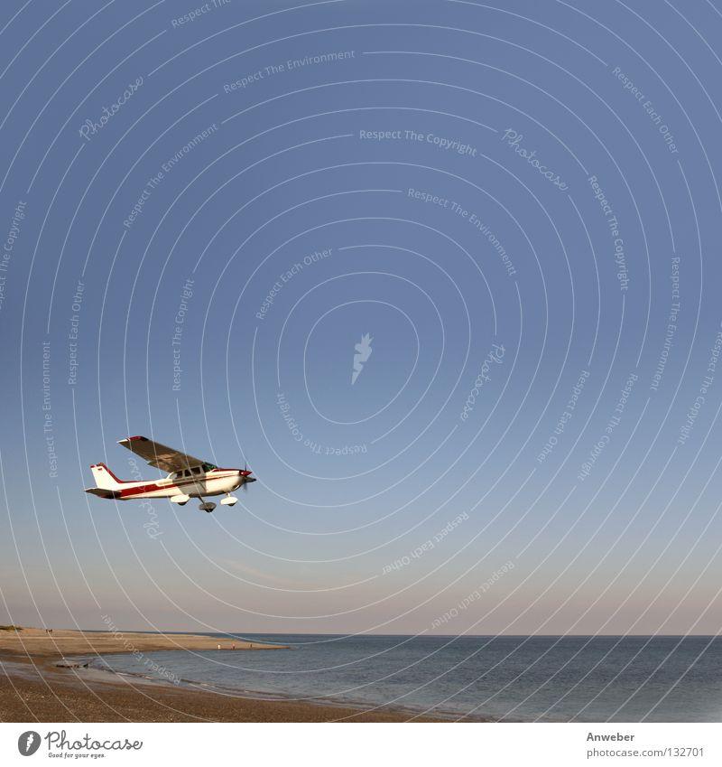 Startendes Flugzeug am Strand von Helgoland Düne Natur Wasser Meer Ferien & Urlaub & Reisen Landschaft Küste Umwelt fliegen groß Horizont Verkehr Luftverkehr