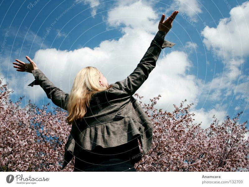 Flying Frau Himmel Natur blau Hand weiß Baum Sommer Freude Wolken Erholung Leben Freiheit Bewegung Blüte Glück